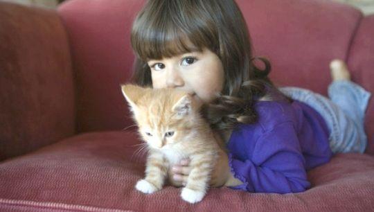 Дівчинка зі своїм улюбленим Рижиков
