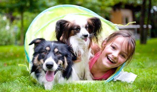 Дівчинка грає зі своїми собаками